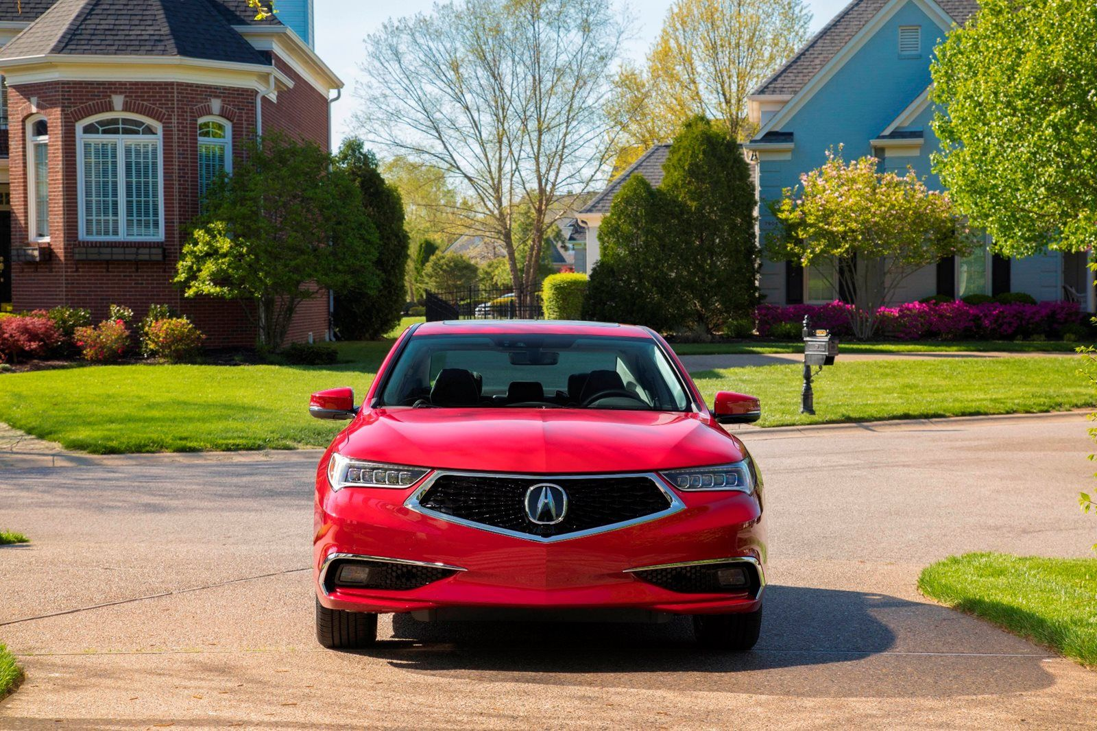 Red Acura TLX front view